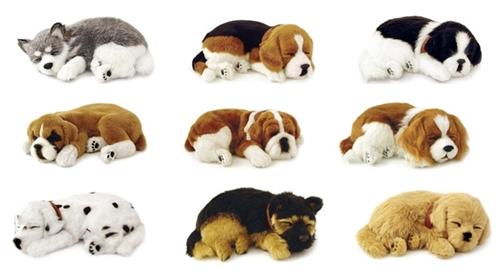 """Adopta un """"Perfect Petzzz"""", la mascota de compañía que respira ..."""