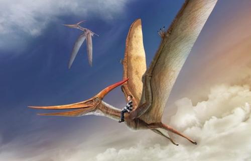 A5 Dinoprints, la lámina de tu peque montando en dinosaurio