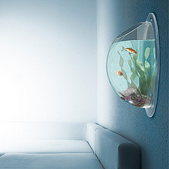 acuario-de-pared-2