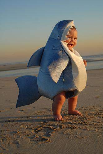 Clic clac foto… bebé tiburón