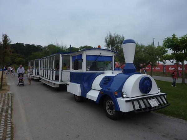 tren-turstico-magdalena-santander