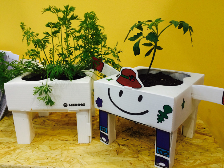 seedbox-huerto-urbano-3