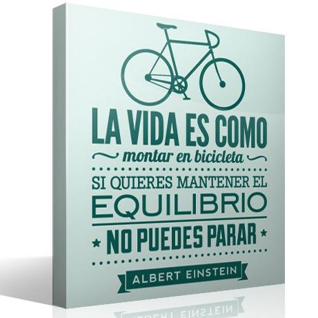 lamina-bici