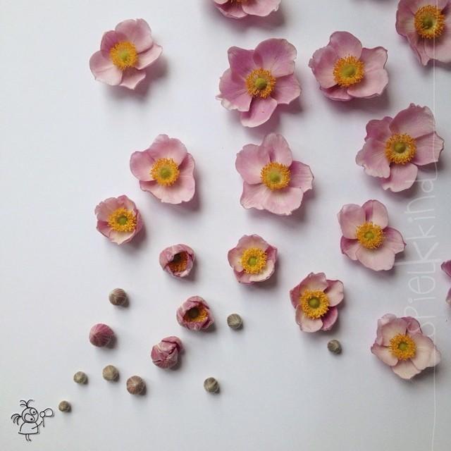 instagram-arte-flores-rosas