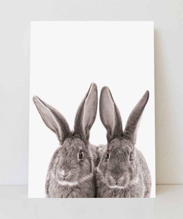 lamina-infantil-conejos